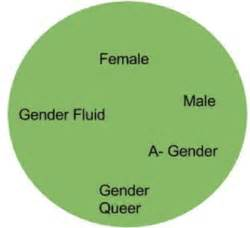 Gender and Language: Challenging the Stereotypes